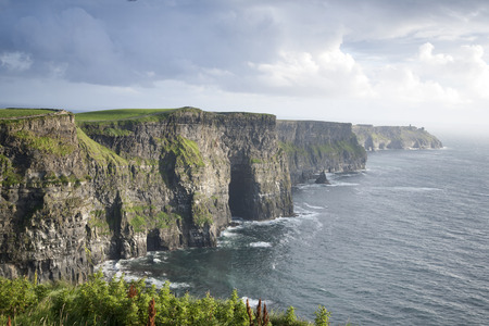 Cliffs of Moher, Clare Coast, Ireland photo