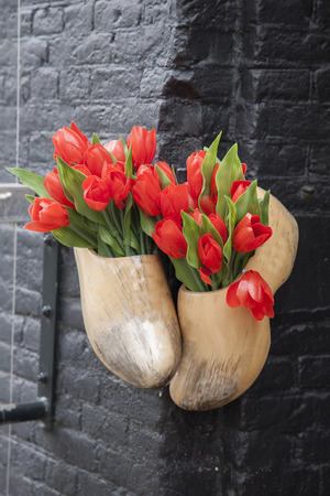 amsterdam: Traditional Clogs and Tulips outside Restaurant in Amsterdam, Holland