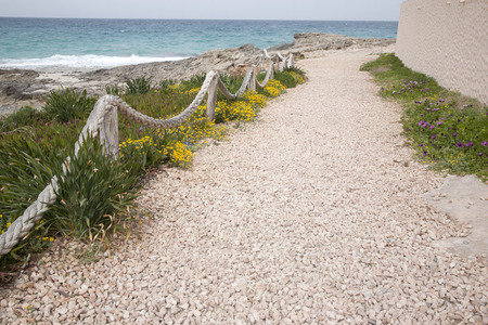formentera: Footpath on Es Calo Beach; Formentera; Balearic Islands; Spain