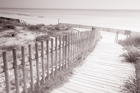 formentera: Valencians Beach; Formentera; Balearic Islands; Spain in Black and White Sepia Tone