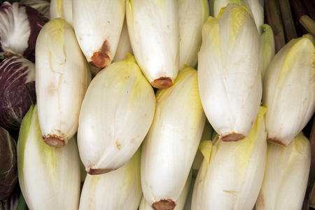 endive: Endive Background on Market Stall Stock Photo