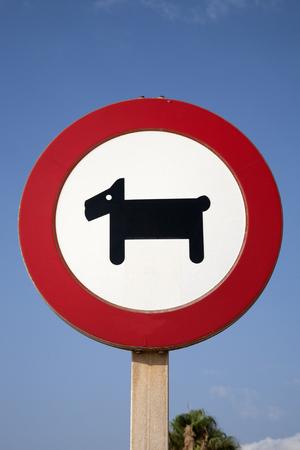 prohibition: Dog Prohibition Sign against Blue Sky Background Stock Photo