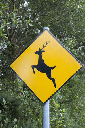 dimond: Yellow Dimond Shaped Deer Sign Stock Photo