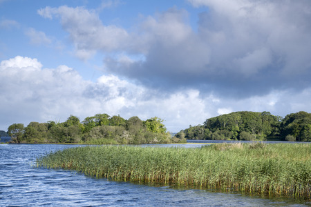 county kerry: Lough Leane Lake, Killarney National Park, County Kerry; Ireland