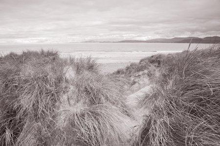 ring tones: Rossbeigh Beach, County Kerry; Ireland in Black and White Sepia Tone