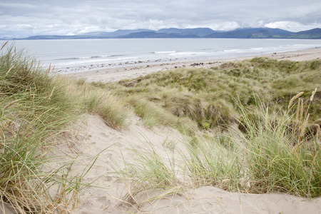 county kerry: Rossbeigh Beach, County Kerry; Ireland