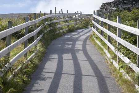 fence: Pathway with Wooden Fence, Ireland in Summer