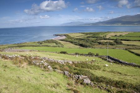 dingle: View from Brandon Point, Dingle Peninsula; Ireland Stock Photo