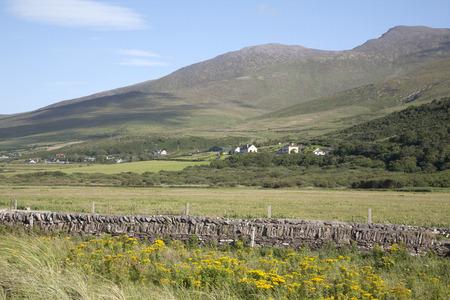 dingle: Countryside in Dingle Peninsula, Ireland