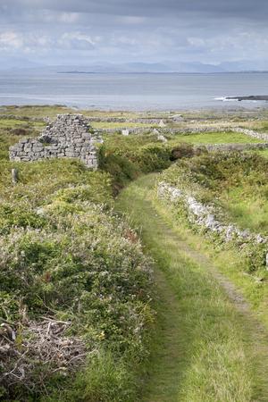aran islands: Open Track on Inishmore, Aran Islands, Ireland
