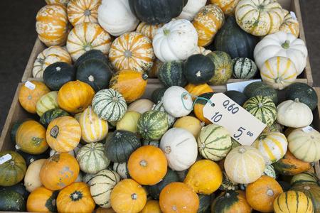stall: Pumpkin Vegetable Background on Market Stall Stock Photo