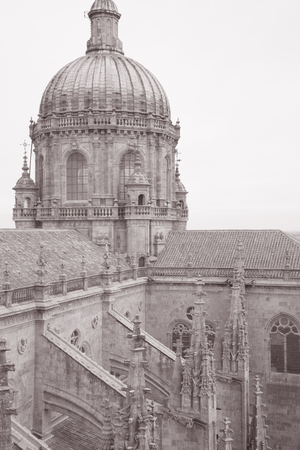 Cathedral Church Tower, Salamanca, Europe in Black and White Sepia Tone