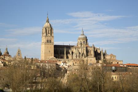 salamanca: Cathedral Church, Spain, Salamanca, Europe