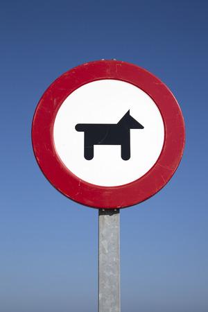 interdiction: Chien Interdiction Connexion à la plage Cadre Banque d'images