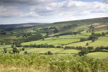 moors: North York Moors outside Hutton le Hole Village; Yorkshire; England; UK