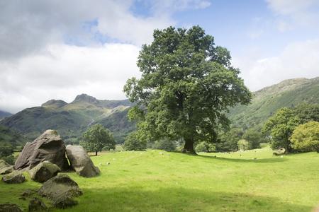 lake district england: The Langdale Boulders, Lake District, England, UK