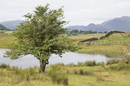 lake district england: Tewet Tarn Lake, Keswick; Lake District; England; UK