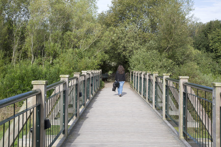irish countryside: Woman Walking on Wooden Bridge, Ireland