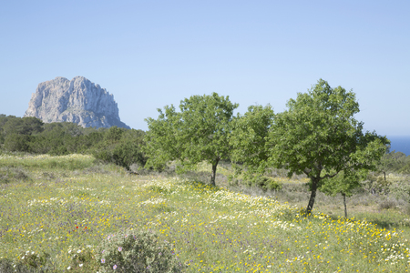 vedra: Vedra Island from outside Hort Cove; Ibiza; Spain