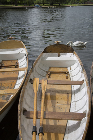 stratford upon avon: Rowing Boats on River, Stratford Upon Avon, England, UK