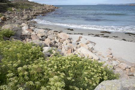 Beach at Arou, Costa de la Muerte, Galicia, Spain Stock Photo