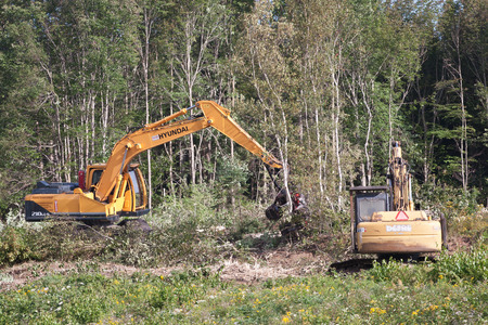 enfield: ENFIELD, CANADA - SEPT 18, 2014: Hyundai R210LC-9 processor clearing forest near Enfield, NS. Hyundai is a leading manufacturer of Hydraulic crawlers and wheeled excavators.