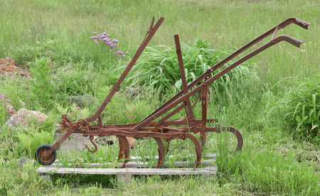farm implement: Vintage horse drawn spring tooth harrow display.