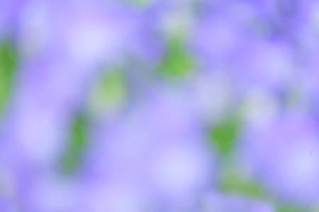glimmering: Colorful bokeh blur background. Stock Photo