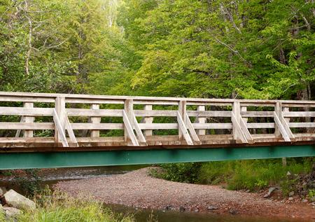 foot bridge: Foot bridge over low running stream in  wooded area.