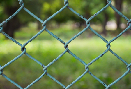 Fence with green background