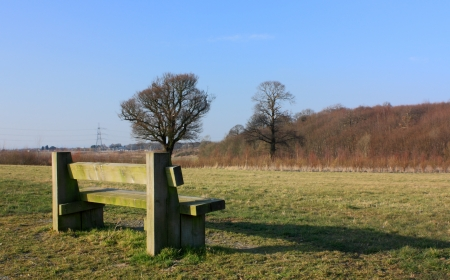 An image of a park bench showing the peaceful view in front photo