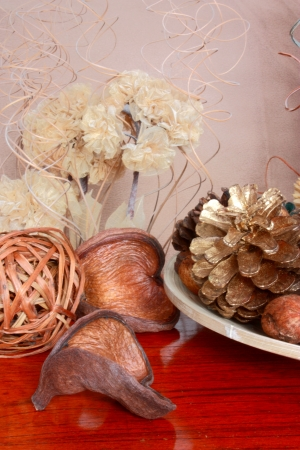 An image of Shells and Pine cones photo