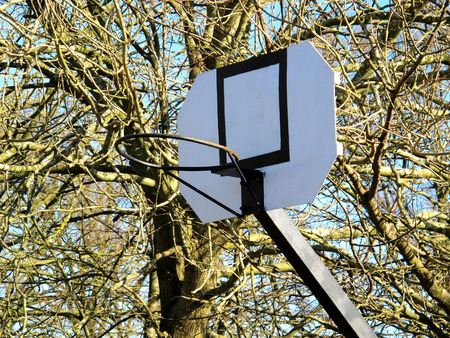 backboard: An Outdoor Basketball hoop with a white wooden backboard