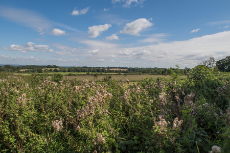 weald: View of the beautiful countryside around Cranbrook in Kent Stock Photo