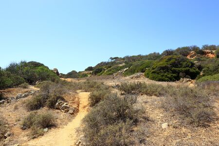The dirt tracks and green trees forming part of the Caminho Do Baleeira Nature Reserve near Albufeira Stock Photo