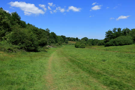 A beautiful woodland landscape in the countryside around Westerham in Kent