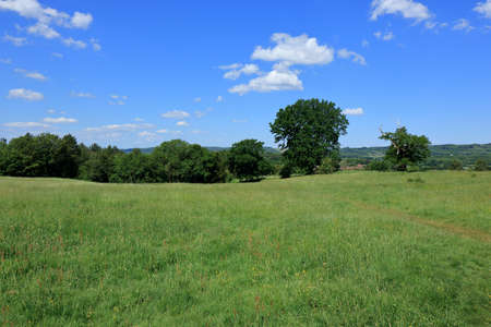 Fields and meadows around the Westerham Countryside