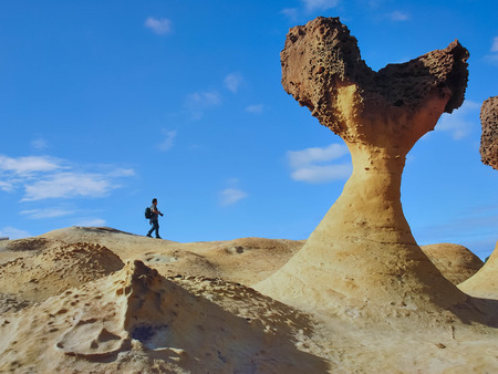 honeycombed: The photographer walks on the mushroom rock