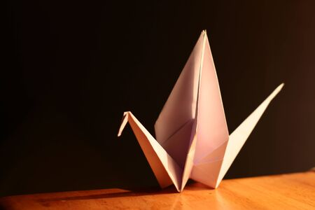 origami crane animal origami on dark background