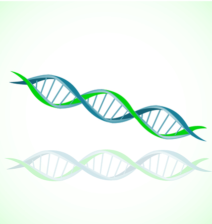 DNA strand double helix spiral icon vector Çizim