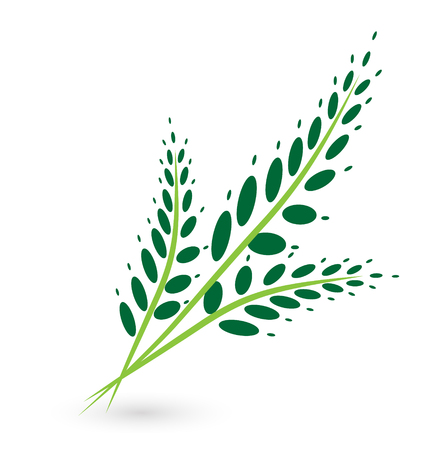 Tropical palm leaf icon Illustration