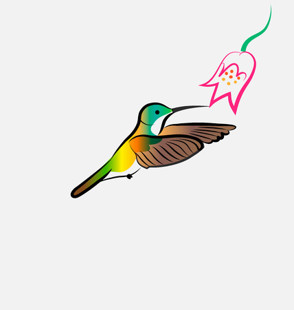 Hummingbird flying with flower, vector icon