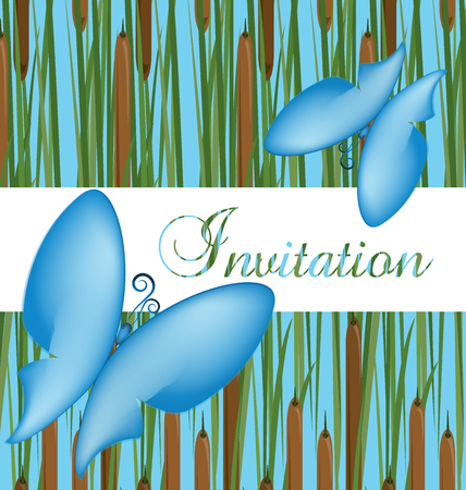 Invitation card with butterflies, wedding icon vector