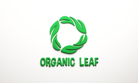 Organic leaf 3D render illustration