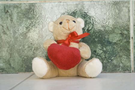 special occasion: Teddy Bear for special Occasion