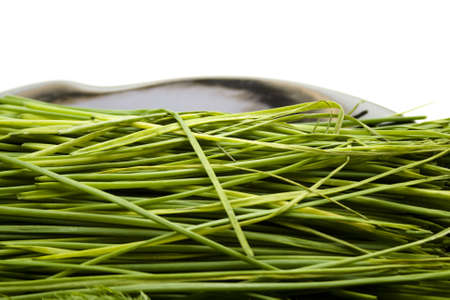 Fresh Chives on Black  plate