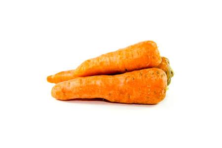 Fresh Raw and Ripe Carrots