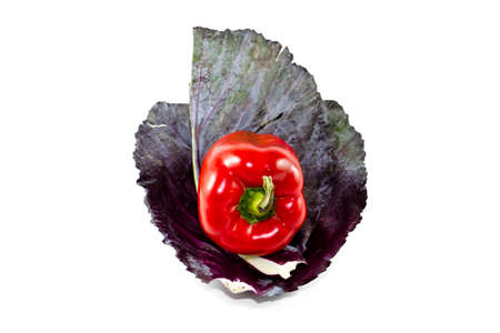 Fresh Red Cabbage Sheet with Red Capsicum