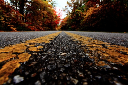 pathways: Old Road
