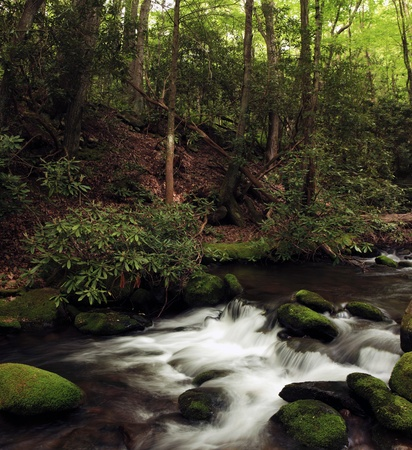 brooks: Fast moving stream in the forest with mossy rocks Stock Photo